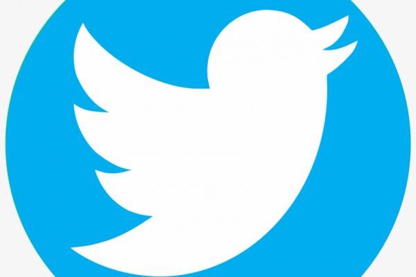 cambios en Twitter en 2020
